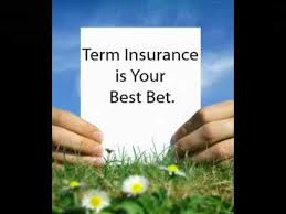 Best-Term-Insurance-Policy